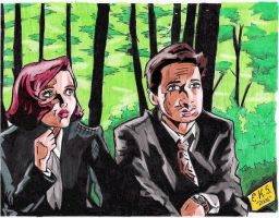 Mulder and Scully by selphiealmasy8