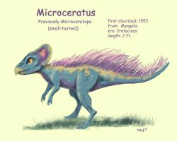 Microceratops by chill13