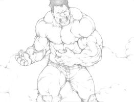 The Hulk by HolyMane
