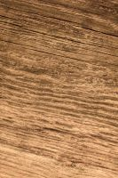 Texture 004 wood by ISOStock