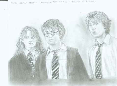 Hermione, Harry and Ron by Charmedsoul