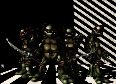Teenage Mutant Ninja Turtles by skunk4gwop