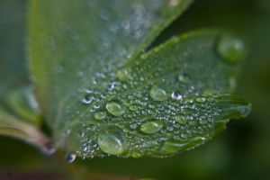 Droplets by wasted49