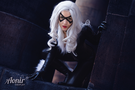 Blackcat Cosplay by Ao-nir
