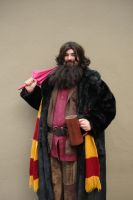 Hagrid by deaus