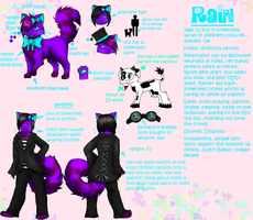Detailed rain reference by rainfrost13