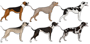 Pit Bull Import Auction by Canidae--Mayhem