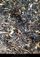 Wood Mulch by pyek-stock