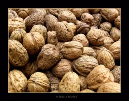Walnuts by Tricia-Danby