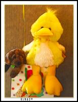 My Birthday Duck and Dog by KLR620
