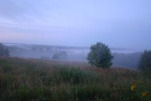 Misty morning 4 by Panopticon-Stock