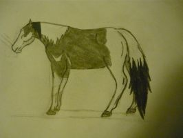 Paint Horse Drawing by EumyCookie