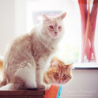 The two of us by TammyPhotography