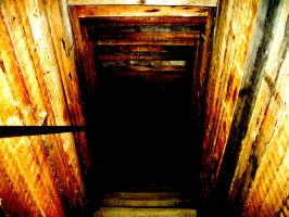 Descending into Darkness by Natters619