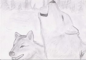 Winter wolves by Spirogs