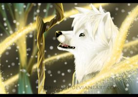 Jack Wolf Frost~ by Tobi-Wolf