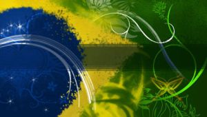 Brazilian flag by leaod