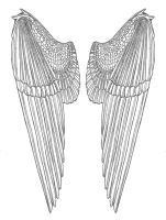 Feathered Wings Design by EuTytoAlba