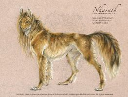 Nharath: Color Ref ver. 2.0 by pallanoph