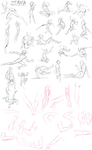 Practice Poses 2 by Zerna