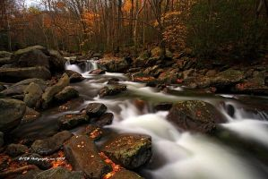 GSMNP Autumn 1 by TRBPhotographyLLC