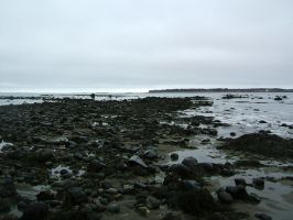 rocky beach by kirastocks