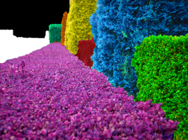 Psychedelic Hedges by MarzEz