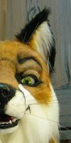 sly red fox sneek peek by LilleahWest