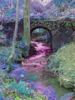 Fairy Bridge by Elyssandrel