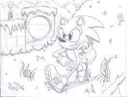 Green Hill Zone by SpongeDudeCoolPants