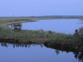 St. Johns River in FLorida by 0rangerayne
