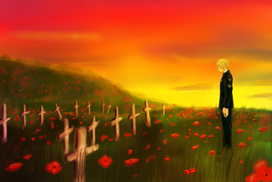 In Flanders fields by verachime
