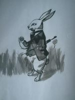 white rabbit by coelha-da-lua
