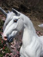 New Dapple Gray Unicorn Stallion by Ethereal-Beings