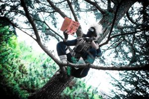 Kakashi Tree by CMOSsPhotography