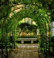 The Secret Garden by IMAGENES-IMPERFECTAS