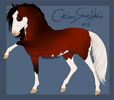 Calipso Import Horse #6 by BH-Stables
