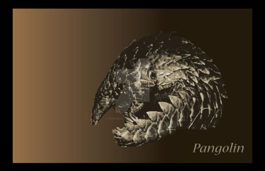 Pangolin by Xan-Salstone