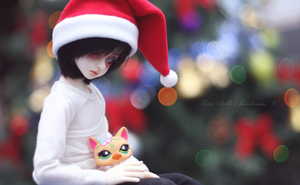 With New Year cat by middlingessence