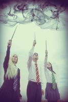 Dumbledore's farewell,Hogwarts Students Cosplay by MissWeirdCat