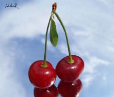 haven fruit by ad-shor