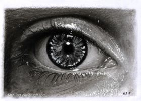 Eye Drawing 15 by MLS-art