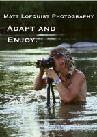 Adapt and Enjoy.. by Brindell