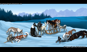First snow_Socialization pic by Aquene-lupetta