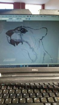 wip2 for lion by SilverFoxDesigns