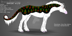 #170 - Draco Equitum Design by ToxicCreed