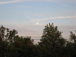 The moon over yard by Lectrichead