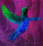 EA Project 12: Sapphire-bellied Hummingbird by meihua