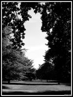 silent park by lordmaci