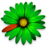 ICQ Flower Icon by fliuwoek